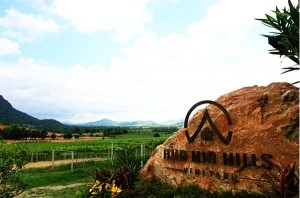 Hua Hin Hill Vineyard